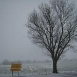 Blick auf Ilbenstadt am 17.03.2013